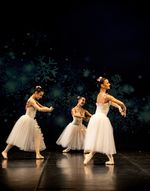 XXI Gala de Primavera Down Burgos Escuela de Danza Cyl.